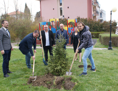 Несебърски общински съветници засадиха дръвчета