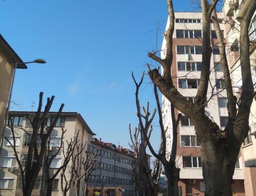 Общински съветник с питане за зелената система на Бургас